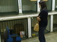 Leda Perini solicita Unidade de Pronto Atendimento Veterinário em Gurupi